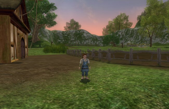 I love the dress-up system in LOTRO. You can equip an entire outfit cosmetically.   For combat purposes you're still wearing your goofball clown suit of mismatched items, but outwardly you can appear to be dressed like a non-idiot. So you can look the way you want (within your financial means) without sacrificing your combat viability. I don't know how we ever got along in MMO games before they gave us this feature.
