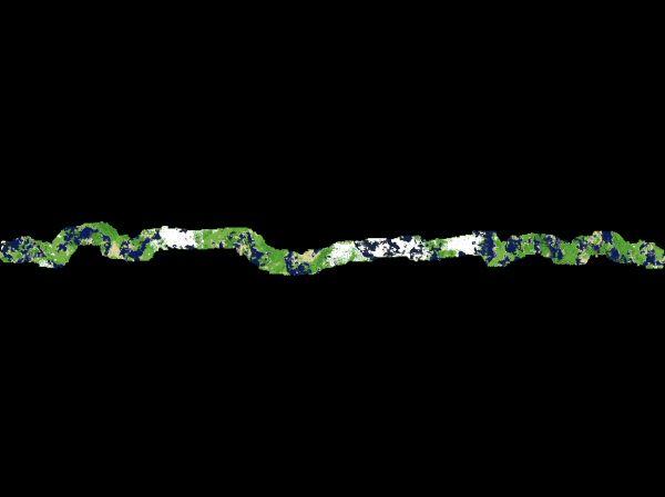Click for gargantuan 1.5MB 12,280×992 image.