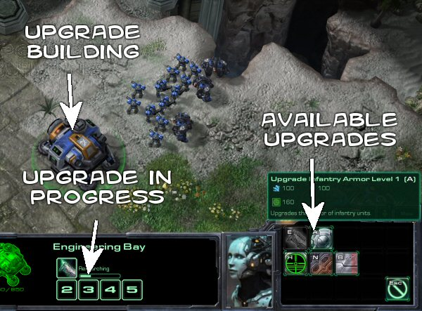 starcraft2_newbie_upgrade.jpg