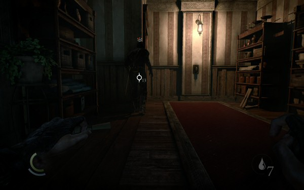thief2014_bug3.jpg
