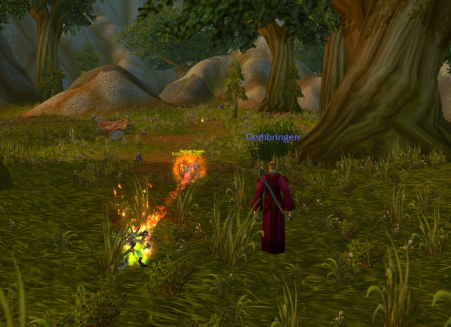 It might look visually exciting, but WoW combat is actually pretty slow-paced, and really uninteresting at low levels.