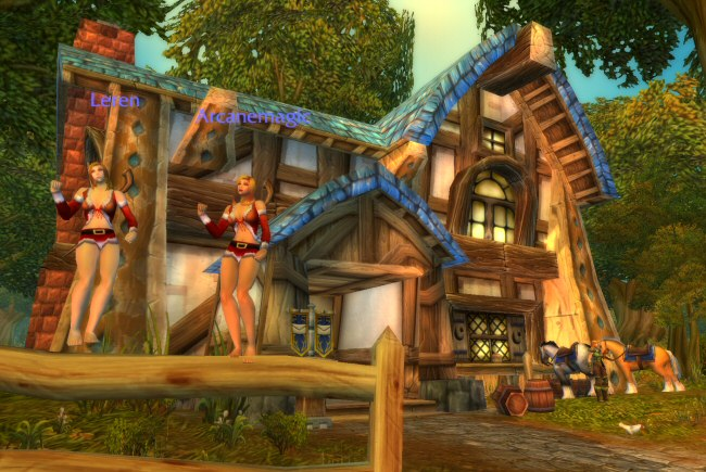 Sexy Santa costumes in WoW? Whatever. I'm sure these were some holiday event item at some point.