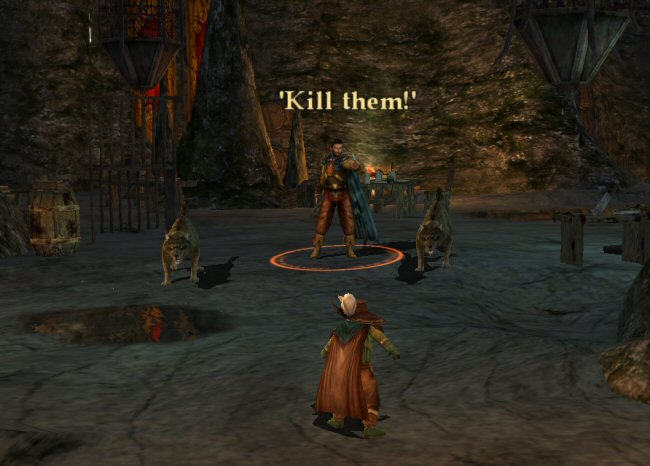 THEM? Man, you could at least recognize that I'm soloing your encounter. Jerk.