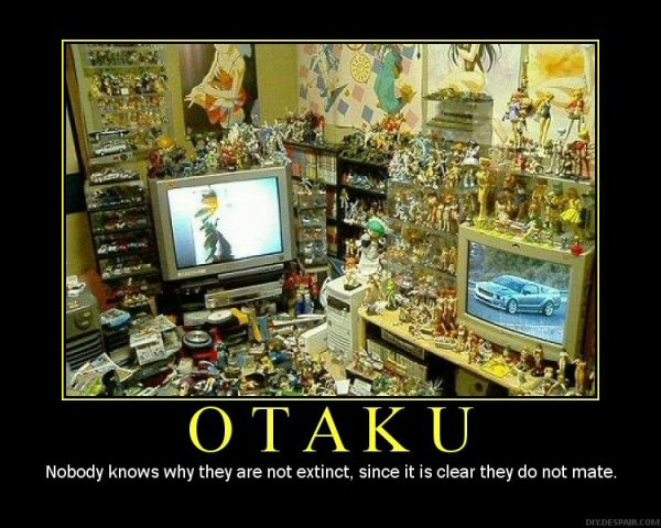 Demotivator, Fanservice, Anime Collectables collection Otaku
