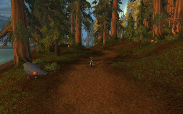 pfwow7_woods1.jpg