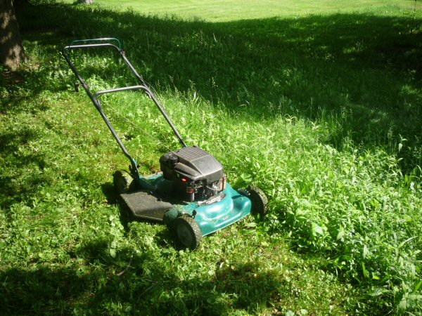 yard_mower.jpg